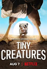 Watch Movie Tiny Creatures - Season 1