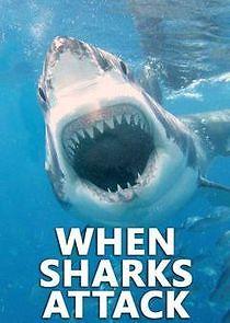 Watch Movie When Sharks Attack - Season 7
