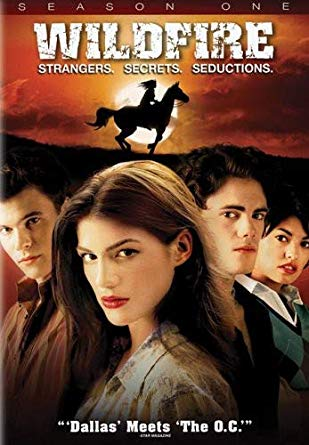 Watch Movie Wildfire - Season 1